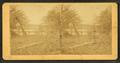 Keytesville as seen from the Champlin Place, from Robert N. Dennis collection of stereoscopic views.png