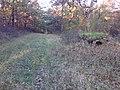 Kis-Moszkvai lőállás 2-1 - panoramio.jpg