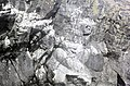 Kittiwake Cove, Skomer - geograph.org.uk - 1444558.jpg