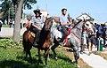 Konji Varna.jpg
