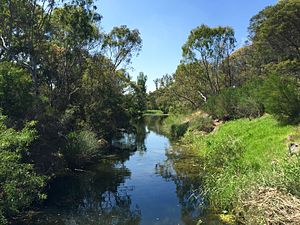 Kororoit Creek - Image: Kororoit Creek, Sunshine looking downstream