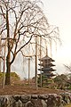 Kujocho, Minami Ward, Kyoto, Kyoto Prefecture 601-8473, Japan - panoramio (1).jpg