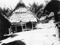 Kullen på vilken byn Boladangko ligger samt templet (labo) i byn. 2 fotos - SMVK - 000278.tif