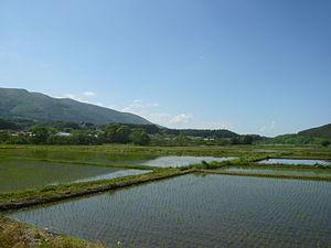 Kunohe, Iwate - ricefields in Kunohe