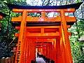 Kyoto Schrein Fushimi-Inari-taisha Torii 37.jpg