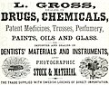 L Gross, Dealer in Drugs and Chemicals (1867) (ADVERT 141).jpeg