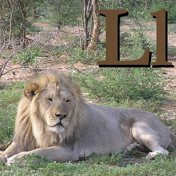 Файл:L is for Lion.jpg