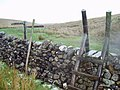 Ladder stile and footpath sign near Ling Gill - geograph.org.uk - 281425.jpg