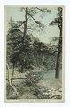 Lake Shore, Lake Minnewaska, N.Y (NYPL b12647398-79489).tiff