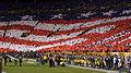 Lambeau Field - November 14, 2011 3.jpg