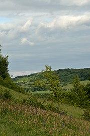 Landschaft Magerwiese Bliesgau.jpg