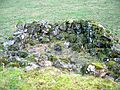 Langbank Farm ruins - internal view.JPG