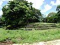 Langi-Tōfāua.jpg
