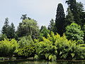 Laurelhurst Park, Portland - Oregon, May 30, 2012.JPG