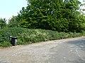 Lay-by Bin - geograph.org.uk - 818450.jpg
