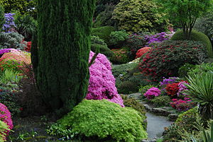 Leonardslee - The Rock Garden