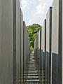 Les stèles du Mémorial aux juifs assassinés dEurope (Berlin) (2704807308).jpg
