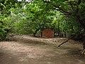 Letrina perdida en el monte (Colonia 1, San Miguel) - panoramio.jpg