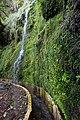 Levada do Furado, Madeira - 2013-04-05 - 90145208.jpg
