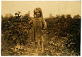 Lewis Hine, Laura Petty, a 6 year old berry picker on Jenkins farm, Rock Creek, Maryland, 1909.jpg
