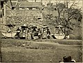 Lion and dragon in northern China (1910) (14597387510).jpg