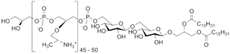 Lipoteichoic acid - Structure of the lipoteichoic acid polymer