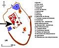 Location of Nimintabba Temple.jpg