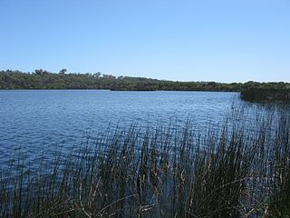 Yanchep National Park Protected area in Western Australia