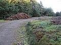 Log pile. Elibank Forest - geograph.org.uk - 294400.jpg