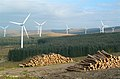Logs, Track and Turbines - geograph.org.uk - 577521.jpg