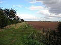 Looking North from East Marsh Road - geograph.org.uk - 57616.jpg