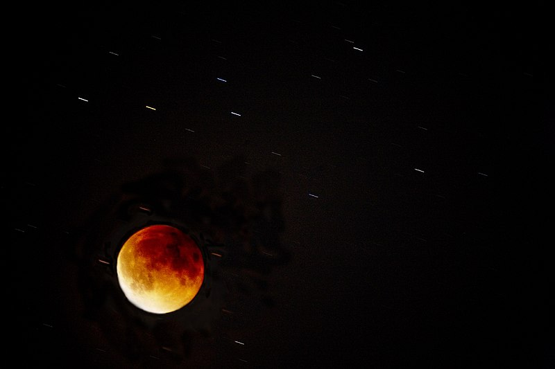 File:Lunar eclipse, the blood moon and stars (40030735202).jpg
