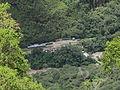 Machu Picchu-IMG 7499.JPG