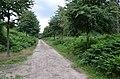 Malden - 2015 - panoramio (13).jpg