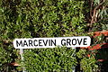 Marcevin Grove, Spa, County Down, November 2010 (01).JPG