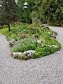 Massif de plantes protégées, CJBG.jpg
