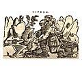Mattioli 1559.jpg