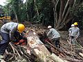 Maui Airmen and Soldiers team up to clear river debris 160914-Z-F3908-001.jpg