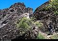 Mehrab Kuh 2020-05-01 27.jpg