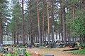 Meltosjärvi cemetery 1.jpg