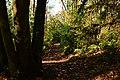 Mercer Slough Nature Park 06.jpg