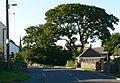 Merrylees Road, Thornton - geograph.org.uk - 514947.jpg