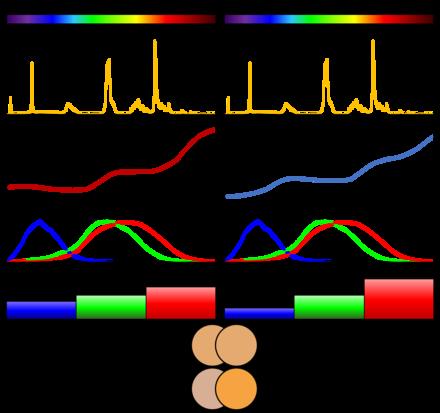Célèbre Couleur métamère — Wikipédia TR12