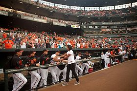 Image illustrative de l'article Saison 2010 des Orioles de Baltimore