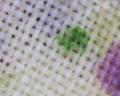 Microscopio - Tela de cortina.png