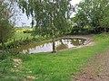 Middridge Grange pond - geograph.org.uk - 2428070.jpg