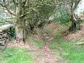 Mill Lane, Raisdale - geograph.org.uk - 54660.jpg