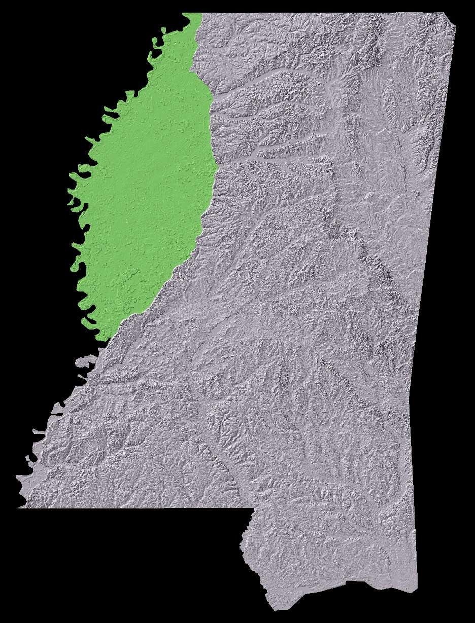 Mississippi Yazoo Delta