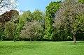 Monceau-sur-Sambre - parc - 2019-05-12 - 09.jpg