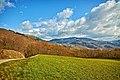 Monte Penice - panoramio (1).jpg